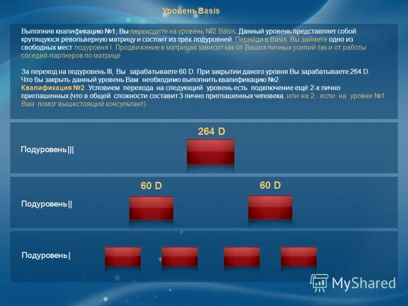 Выполнив квалификацию 1, Вы переходите на уровень 2 Basis. Данный уровень представляет собой крутящуюся револьверную матрицу и состоит из трёх подуровней. Перейдя в Basis, Вы займете одно из свободных мест подуровня I. Продвижение в матрицах зависит