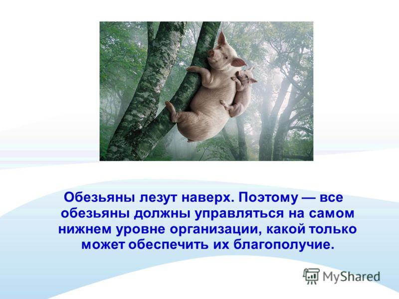 Правило 2 Каждая обезьяна поручается определенному хозяину Если никто не отвечает за действие, то ничего сделано не будет.