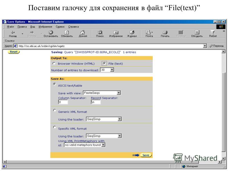 Поставим галочку для сохранения в файл File(text)