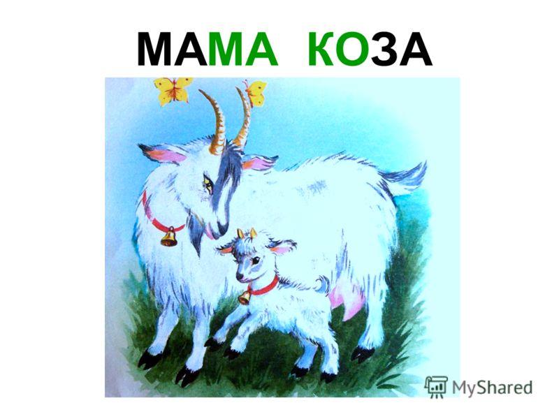 МАМА ЛОШАДЬ Мама лошадь