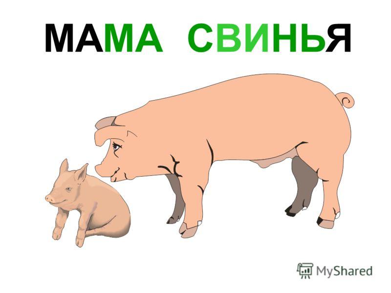 МАМА КОЗА Мама коза