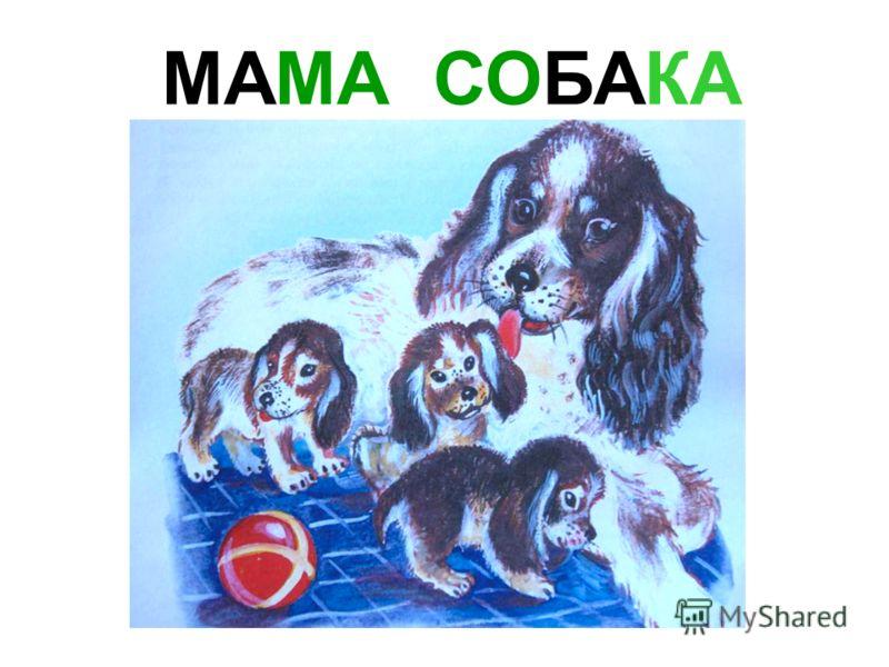 МАМА КОРОВА Мама корова