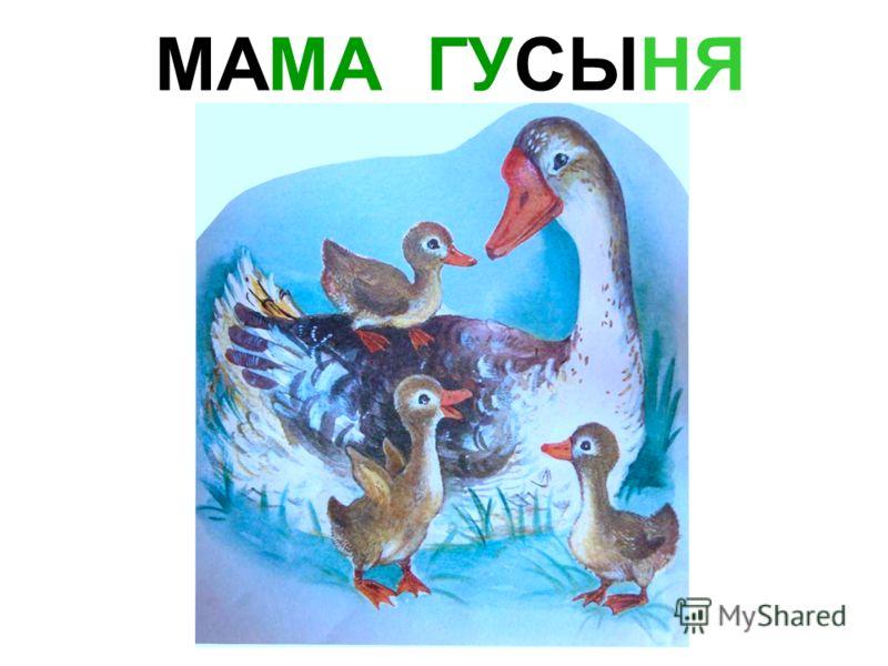 МАМА КУРИЦА Мама курица