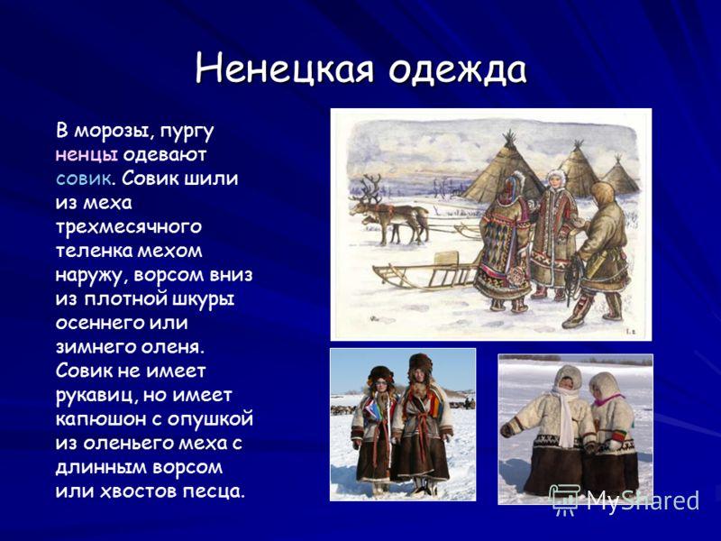 Ненецкая одежда В морозы, пургу ненцы одевают совик. Совик шили из меха трехмесячного теленка мехом наружу, ворсом вниз из плотной шкуры осеннего или зимнего оленя. Совик не имеет рукавиц, но имеет капюшон с опушкой из оленьего меха с длинным ворсом