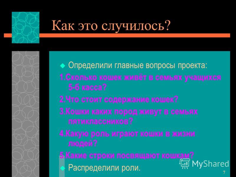 6 Положение дел Тему проекта предложила Сетлана Александровна Гильдман - наш учитель по русскому языку и литературе. Мы, ученики 5-б класса «заразились» её идеей и стали коллективно разрабатывать данный проект. Любовь к «братьям нашим меньшим»,кошкам