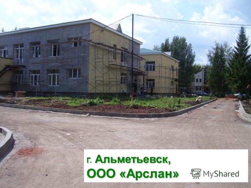 Г. Альметьевск, ООО «Арслан»