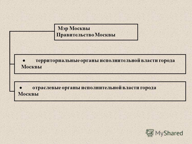 Мэр Москвы Правительство Москвы отраслевые органы исполнительной власти города Москвы территориальные органы исполнительной власти города Москвы