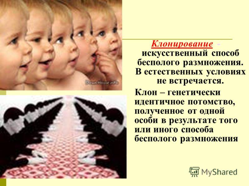 Клонирование - искусственный способ бесполого размножения. В естественных условиях не встречается. Клон – генетически идентичное потомство, полученное от одной особи в результате того или иного способа бесполого размножения