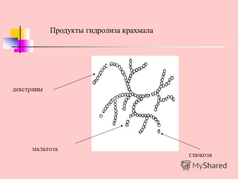 декстрины глюкоза Продукты гидролиза крахмала мальтоза