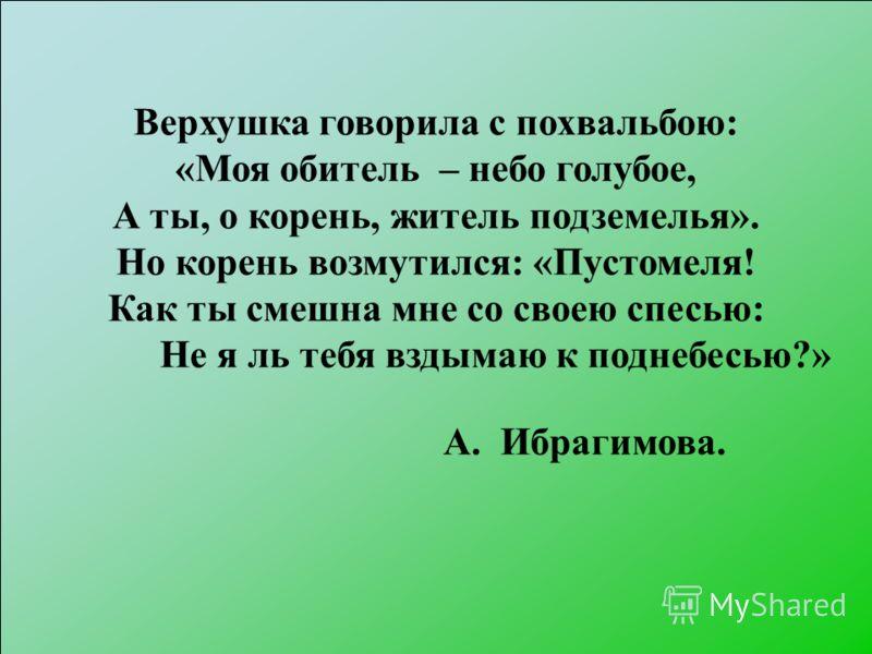 Верхушка говорила с похвальбою: «Моя обитель – небо голубое, А ты, о корень, житель подземелья». Но корень возмутился: «Пустомеля! Как ты смешна мне со своею спесью: Не я ль тебя вздымаю к поднебесью?» А. Ибрагимова.