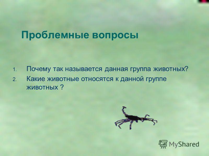 Проблемные вопросы 1. Почему так называется данная группа животных? 2. Какие животные относятся к данной группе животных ?