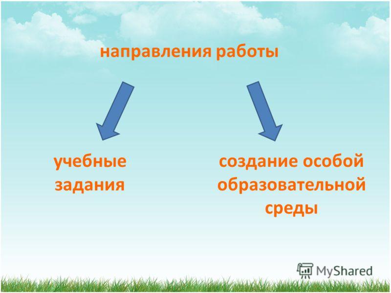 направления работы создание особой образовательной среды учебные задания