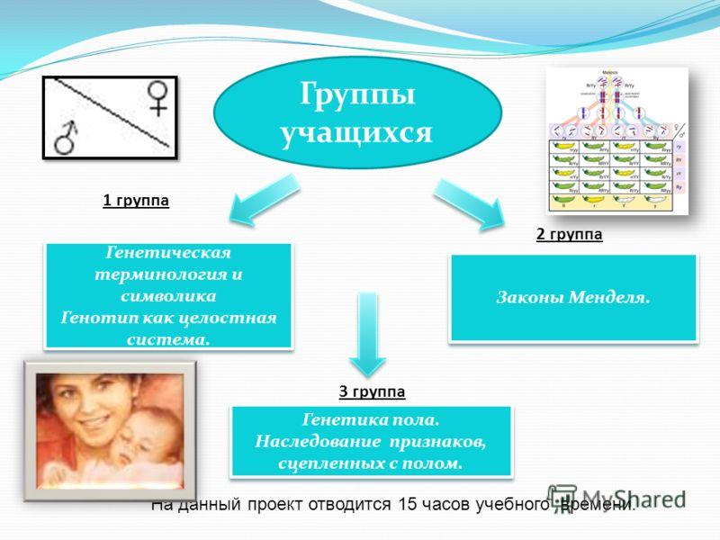 Генетическая терминология и символика Генотип как целостная система. Генетическая терминология и символика Генотип как целостная система. Законы Менделя. Генетика пола. Наследование признаков, сцепленных с полом. 1 группа 2 группа 3 группа На данный