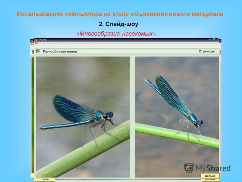 Использование компьютера на этапе объяснения нового материала 2. Слайд-шоу «Многообразие насекомых»