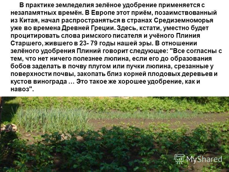 В практике земледелия зелёное удобрение применяется с незапамятных времён. В Европе этот приём, позаимствованный из Китая, начал распространяться в странах Средиземноморья уже во времена Древней Греции. Здесь, кстати, уместно будет процитировать слов