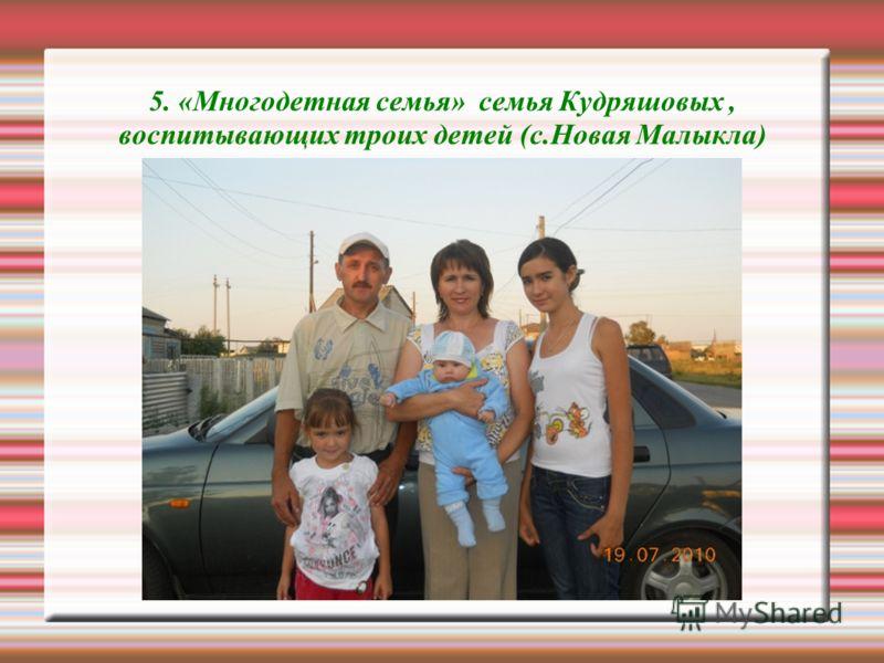5. «Многодетная семья» семья Кудряшовых, воспитывающих троих детей (с.Новая Малыкла)