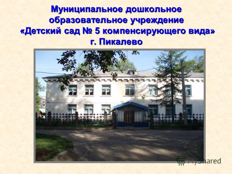 Муниципальное дошкольное образовательное учреждение «Детский сад 5 компенсирующего вида» г. Пикалево
