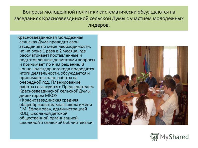 Вопросы молодежной политики систематически обсуждаются на заседаниях Краснозвездинской сельской Думы с участием молодежных лидеров. Краснозвездинская молодёжная сельская Дума проводит свои заседания по мере необходимости, но не реже 1 раза в 2 месяца