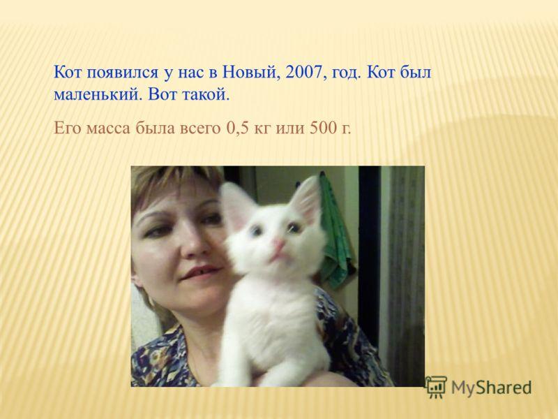 Кот появился у нас в Новый, 2007, год. Кот был маленький. Вот такой. Его масса была всего 0,5 кг или 500 г.