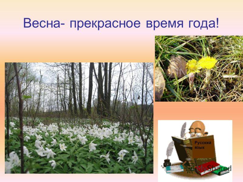 Весна- прекрасное время года! Русский язык