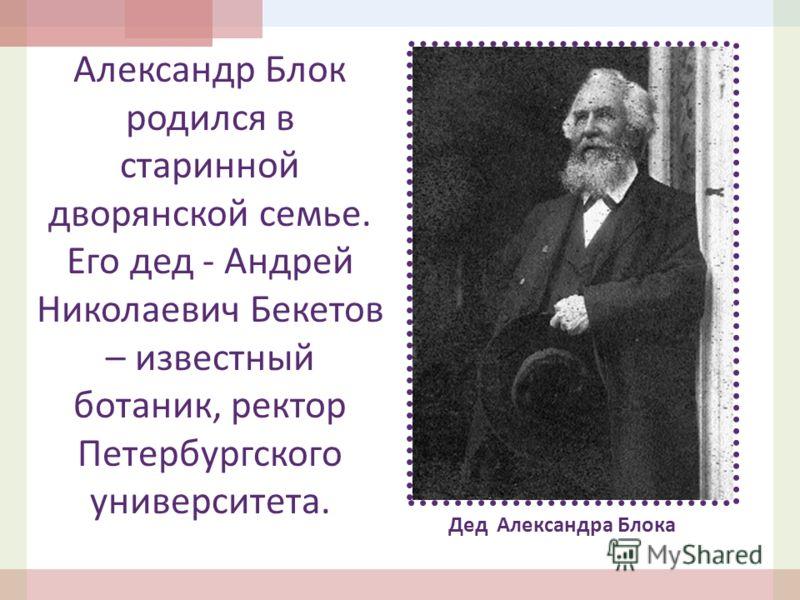 Александр Блок родился в старинной дворянской семье. Его дед - Андрей Николаевич Бекетов – известный ботаник, ректор Петербургского университета. Дед Александра Блока