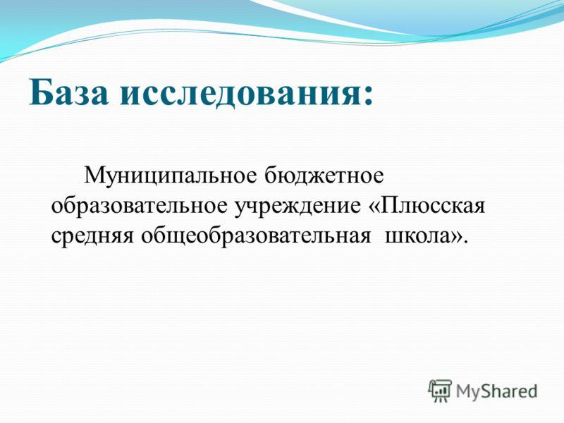 База исследования: Муниципальное бюджетное образовательное учреждение «Плюсская средняя общеобразовательная школа».
