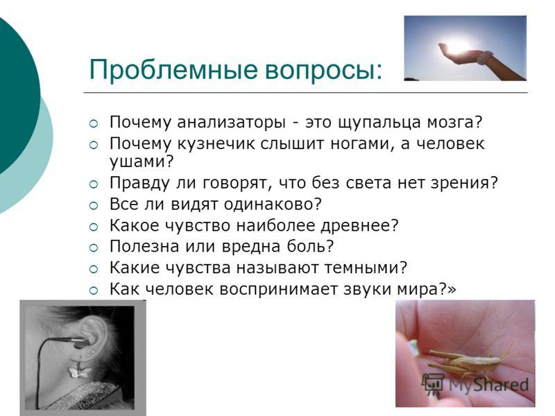 Проблемные вопросы: Почему анализаторы - это щупальца мозга? Почему кузнечик слышит ногами, а человек ушами? Правду ли говорят, что без света нет зрения? Все ли видят одинаково? Какое чувство наиболее древнее? Полезна или вредна боль? Какие чувства н