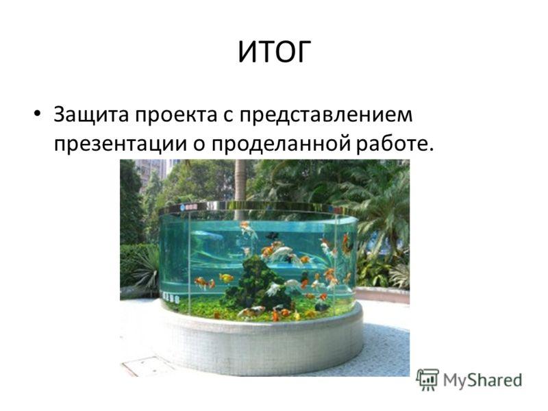 ИТОГ Защита проекта с представлением презентации о проделанной работе.