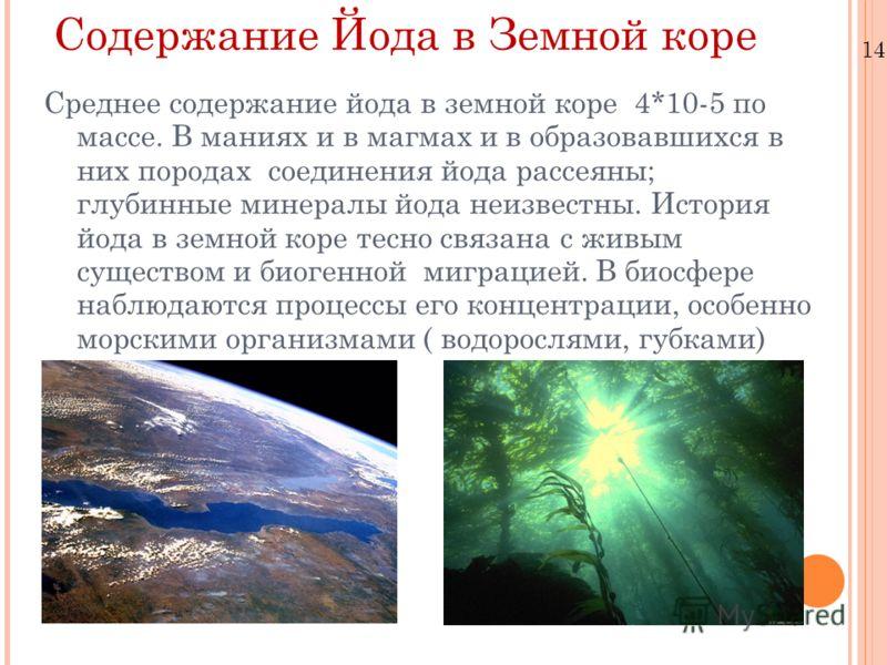 Содержание Йода в Земной коре Среднее содержание йода в земной коре 4*10-5 по массе. В маниях и в магмах и в образовавшихся в них породах соединения йода рассеяны; глубинные минералы йода неизвестны. История йода в земной коре тесно связана с живым с