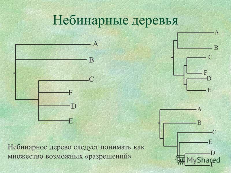 Небинарные деревья C D E E D A B F D B Небинарное дерево следует понимать как множество возможных «разрешений» F A B C F A C E