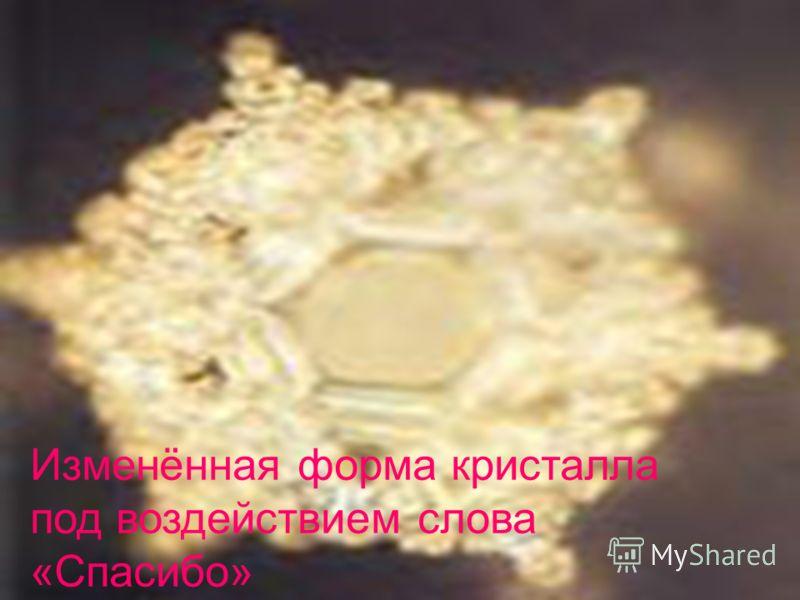 Изменённая форма кристалла под воздействием слова «Спасибо»