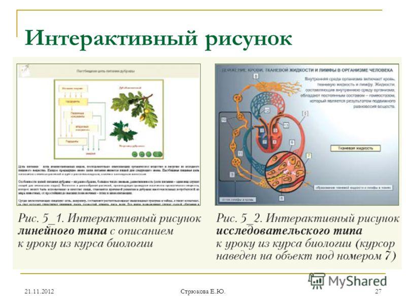 Интерактивный рисунок 21.11.201227 Стрюкова Е.Ю.
