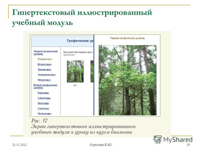 Гипертекстовый иллюстрированный учебный модуль 21.11.201239 Стрюкова Е.Ю.