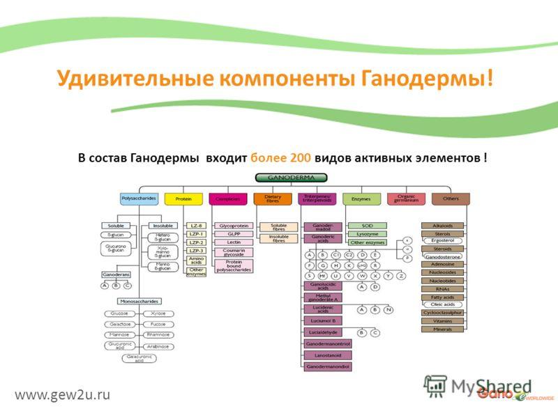 www.gew2u.ru Удивительные компоненты Ганодермы! В состав Ганодермы входит более 200 видов активных элементов !