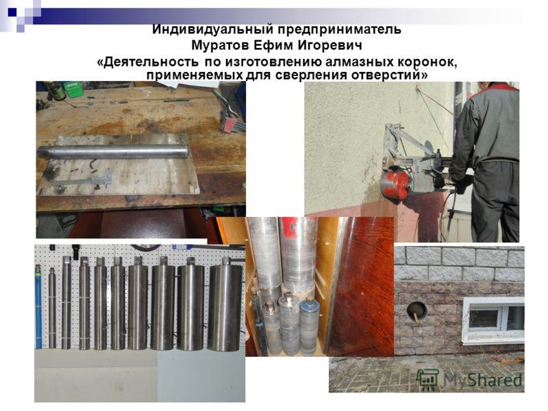 Индивидуальный предприниматель Муратов Ефим Игоревич «Деятельность по изготовлению алмазных коронок, применяемых для сверления отверстий»