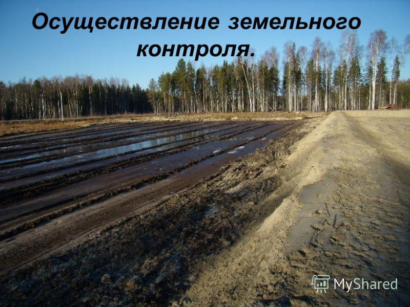 Осуществление земельного контроля.