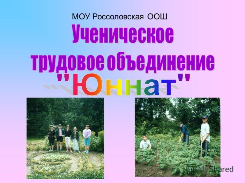 МОУ Россоловская ООШ