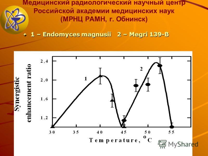 Медицинский радиологический научный центр Российской академии медицинских наук (МРНЦ РАМН, г. Обнинск) 1 – Endomyces magnusii 2 – Megri 139-B