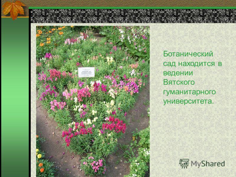 Ботанический сад находится в ведении Вятского гуманитарного университета.