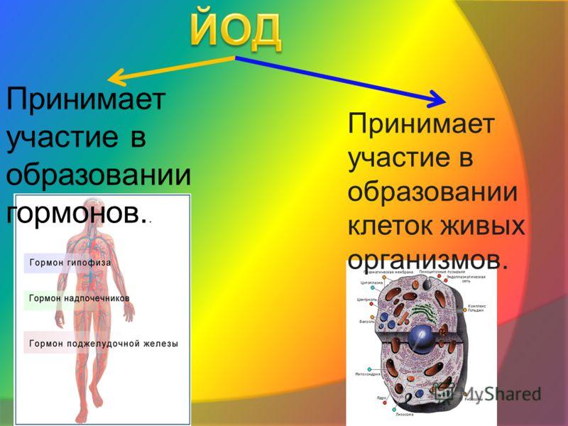 Принимает участие в образовании гормонов.. Принимает участие в образовании клеток живых организмов.