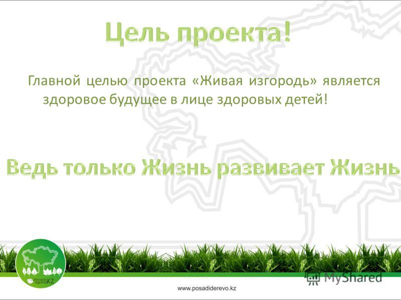 Главной целью проекта «Живая изгородь» является здоровое будущее в лице здоровых детей!
