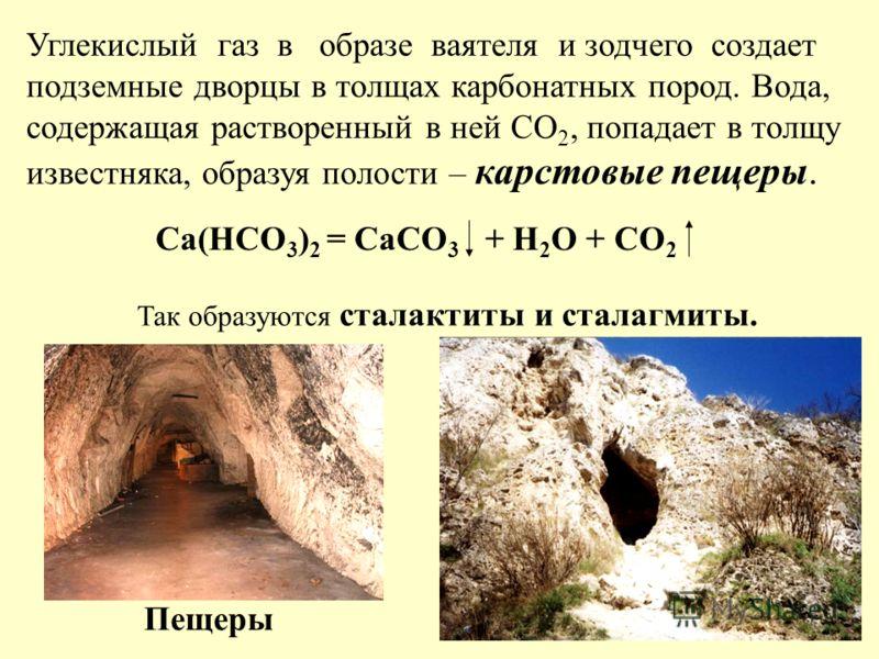 Углекислый газ в образе ваятеля и зодчего создает подземные дворцы в толщах карбонатных пород. Вода, содержащая растворенный в ней СО 2, попадает в толщу известняка, образуя полости – карстовые пещеры. Са(НСО 3 ) 2 = СаСО 3 + Н 2 О + СО 2 Так образую