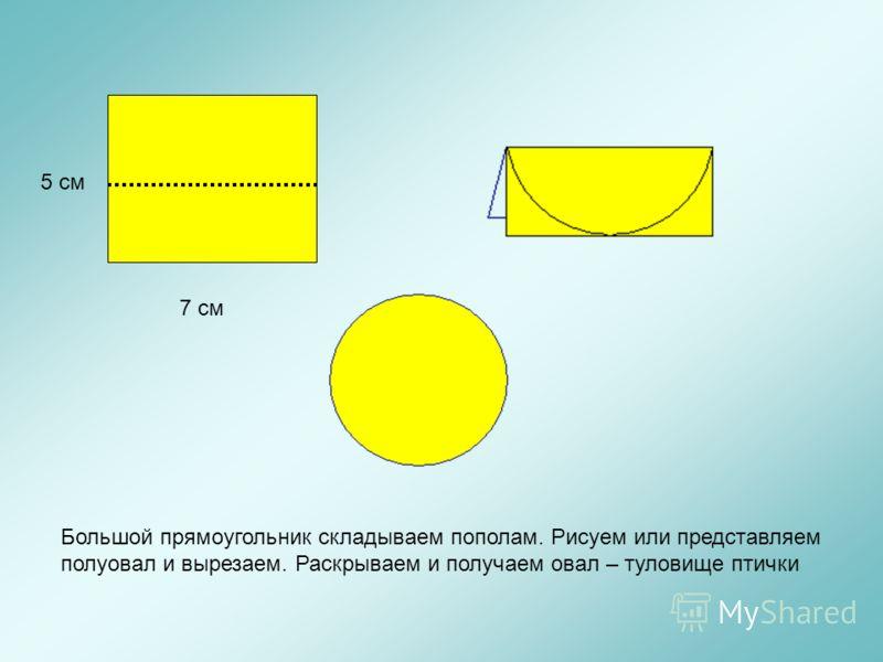 7 см 5 см Большой прямоугольник складываем пополам. Рисуем или представляем полуовал и вырезаем. Раскрываем и получаем овал – туловище птички