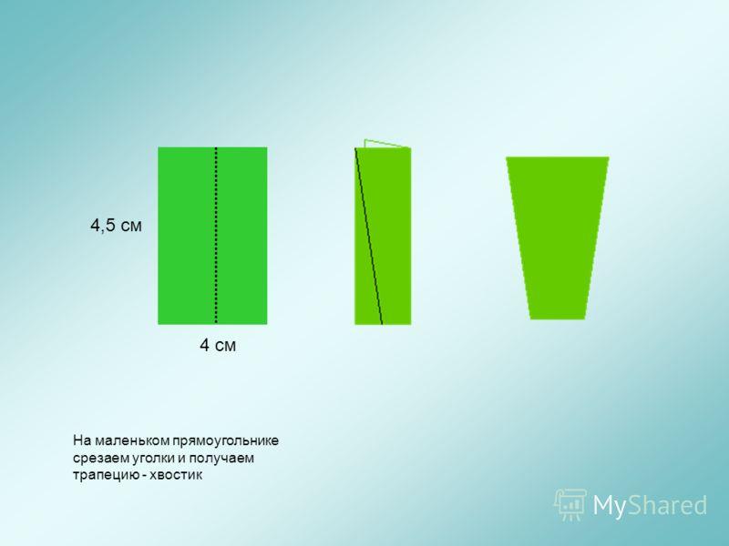 4 см 4,5 см На маленьком прямоугольнике срезаем уголки и получаем трапецию - хвостик