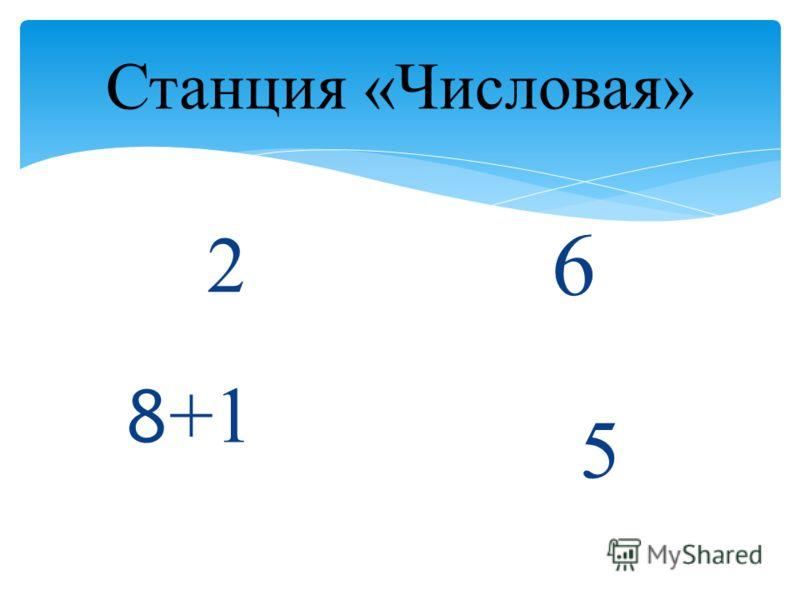 Станция «Числовая» 2 8 +1 6 5