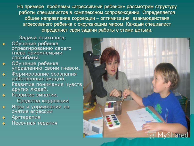 На примере проблемы «агрессивный ребенок» рассмотрим структуру работы специалистов в комплексном сопровождении. Определяется общее направление коррекции – оптимизация взаимодействия агрессивного ребенка с окружающим миром. Каждый специалист определяе