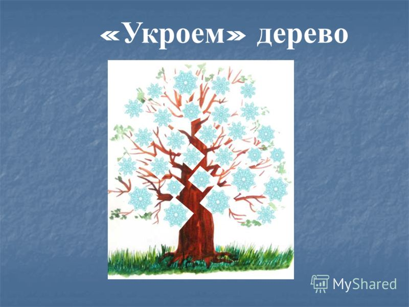 « Укроем » дерево