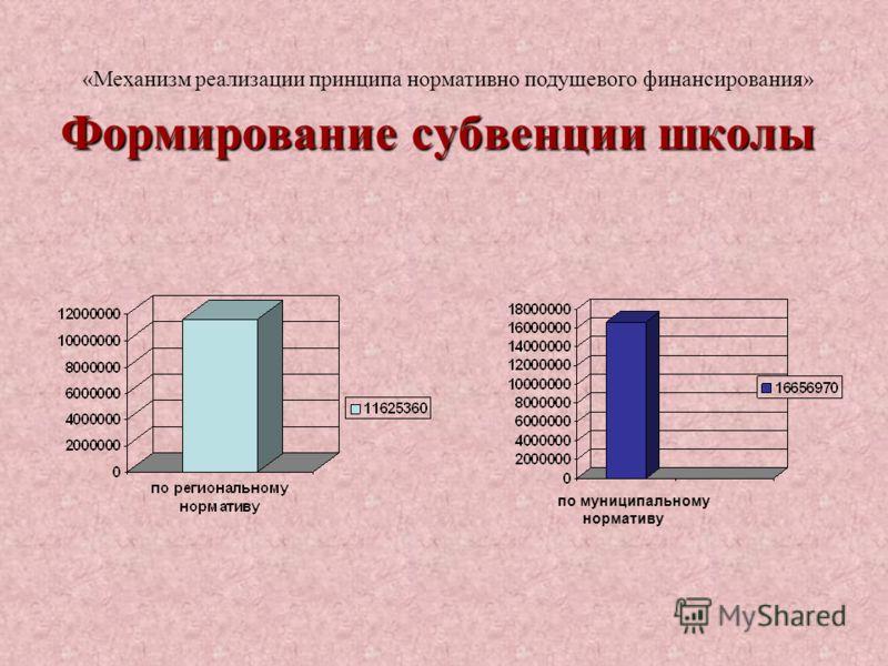 Формирование субвенции школы «Механизм реализации принципа нормативно подушевого финансирования» по муниципальному нормативу