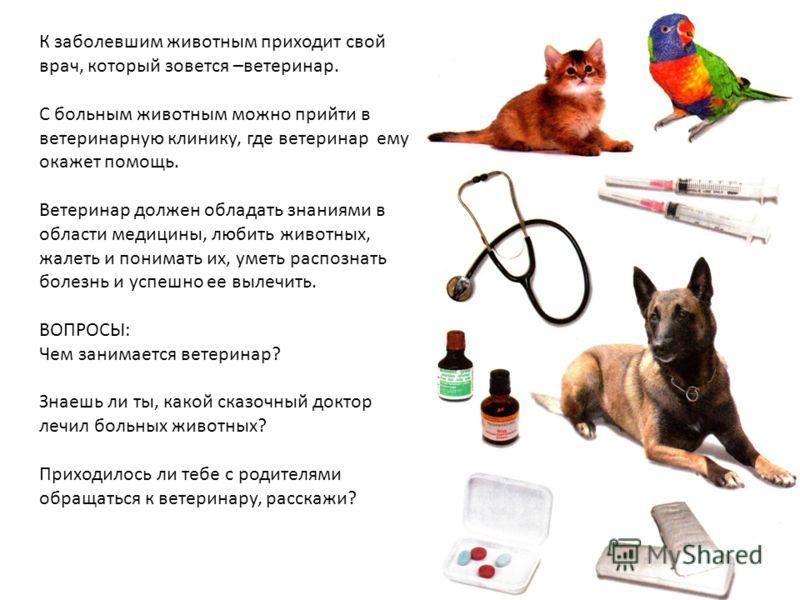 К заболевшим животным приходит свой врач, который зовется –ветеринар. С больным животным можно прийти в ветеринарную клинику, где ветеринар ему окажет помощь. Ветеринар должен обладать знаниями в области медицины, любить животных, жалеть и понимать и