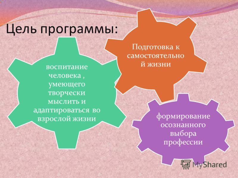 Цель программы: формирование осознанного выбора профессии воспитание человека, умеющего творчески мыслить и адаптироваться во взрослой жизни Подготовка к самостоятельно й жизни